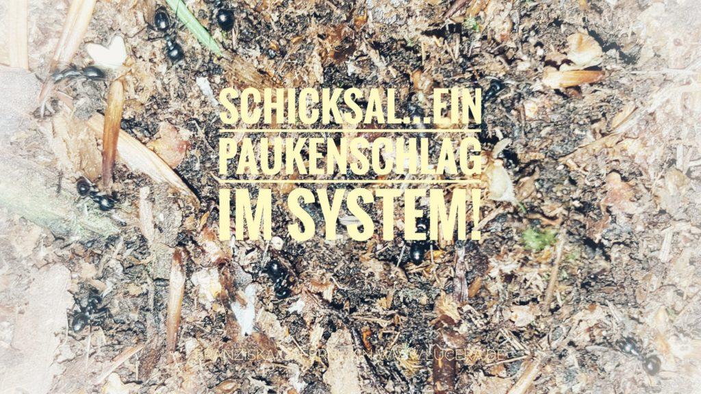 Struktur und Ordnung hilft dem System bei Trauer, Trauma Chaos, Krise